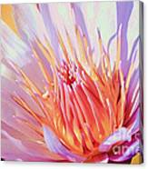 Aquatic Bloom Canvas Print