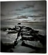 Aquatic Pathway Canvas Print