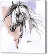 Arabian Horse Ink Drawing 1 Canvas Print