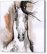 Arabian Horse Ink Drawing 2 Canvas Print