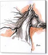 Arabian Horse Ink Drawing 3 Canvas Print