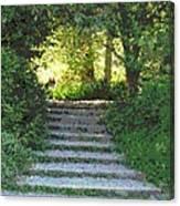 Arboretum Steps Canvas Print