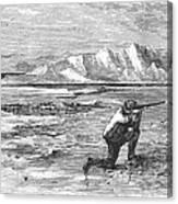 Arctic: Bear Hunting, 1871 Canvas Print