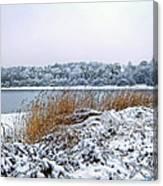 Ardingly Reservoir - Winter Snowy Scene Canvas Print
