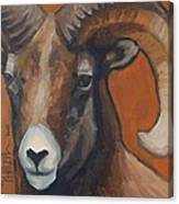 Aries - Ram Painting Canvas Print