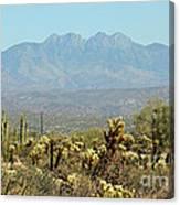 Arizona Scenic V Canvas Print