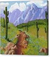 Arizona Trails Canvas Print