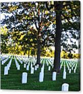 Arlington Cemetery Graves Canvas Print