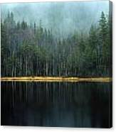 Arrow-straight Evergreens Are Reflected Canvas Print