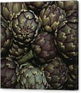 Artichokes At A Market In Provence Canvas Print