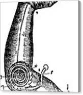 Artificial Arm Designed By Ambroise Canvas Print
