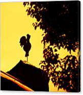 As A Rooster Crows Canvas Print