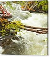 As The River Flows Canvas Print