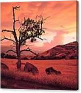 Ashland Sunset Canvas Print
