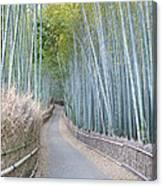 Asia Japan Kyoto Arashiyama Sagano Canvas Print