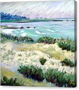 Asilomar Beach Canvas Print