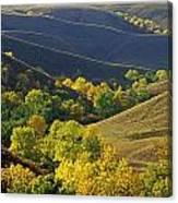Aspen Bluffs In Autumn Colors Canvas Print