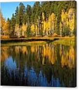 Aspen Mirror Canvas Print