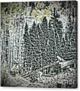 Aspen Tractors  Canvas Print