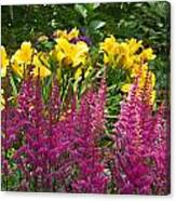 Astilbe And Lilies Canvas Print