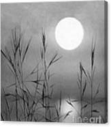 At The Full Moon Canvas Print