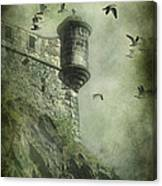 At The Top Canvas Print
