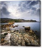 Atlantic Coast In Newfoundland Canvas Print