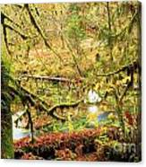 Attack Of The Moss Canvas Print