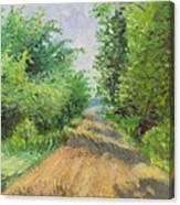 August Lane Canvas Print