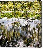 August Reflections Canvas Print