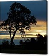 Aussie Silhouette Canvas Print