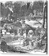 Australian Gold Rush, 1851 Canvas Print