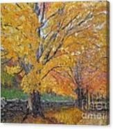 Autum Trail Canvas Print