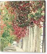 Autumn And Fall Canvas Print