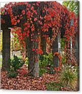 Autumn Arbor In Grants Pass Park Canvas Print