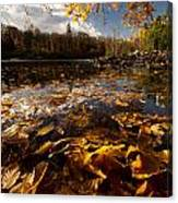 Autumn At Ragged Falls Canvas Print