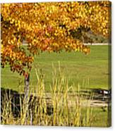 Autumn At The Schoolground Canvas Print