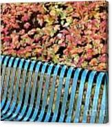 Autumn Blue Bench Canvas Print
