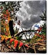 Autumn Breeze Through The Trees    Alt Canvas Print