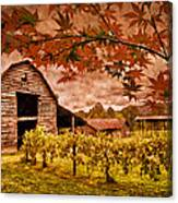 Autumn Cabernet Canvas Print