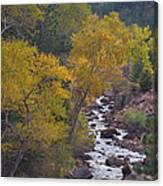 Autumn Canyon Colorado Scenic View Canvas Print