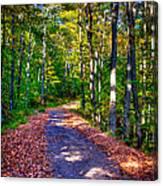 Adirondack Color 53 Canvas Print