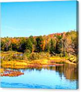 Adirondack Color 54 Canvas Print