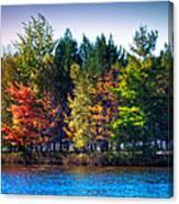 Adirondack Color 63 Canvas Print