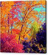 Autumn Colors 13 Canvas Print