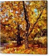 Autumn Colors 3 Canvas Print
