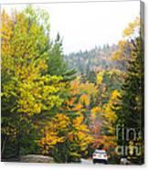 Autumn Colors 3990 Canvas Print