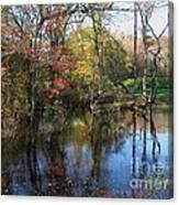 Autumn Colors On The Pond  Canvas Print