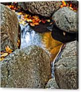 Autumn Colors Reflected In Pool Of Water Canvas Print