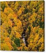 Autumn Colour And Waterfalls, Cape Canvas Print